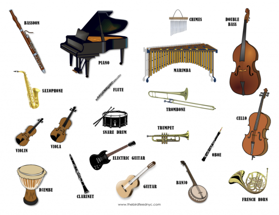 Musical-Instruments-The-Bird-Feed-1024x790